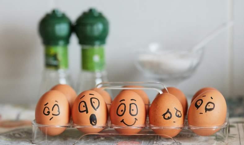 psychobiotyki a dieta