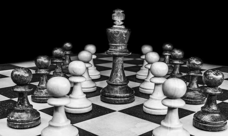 Samiec alfa w świecie ludzi – kim jest i jak go rozpoznać?