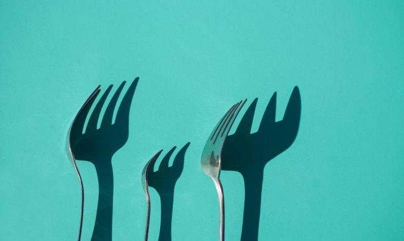 Anoreksja - śmiertelny głód